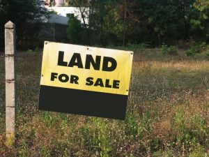 How to Find Affordable Land for Sale Florida